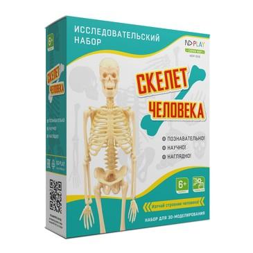 Исследовательский набор Скелет человека ND Play