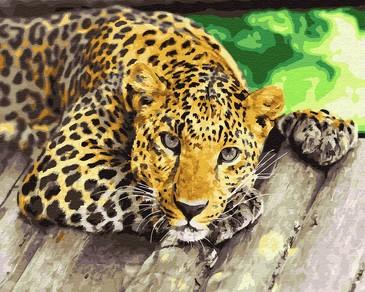 Картина по номерам на подрамнике. Грустный леопард ВанГогВоМне