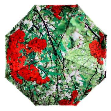 Зонт автомат 3 сложения Рябина красная Flioraj