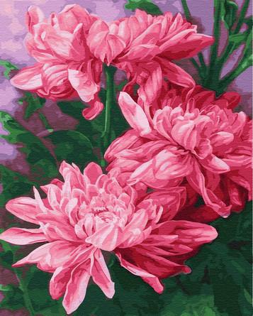 Картина по номерам на подрамнике. Три розовых пиона ВанГогВоМне