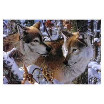 Вышивка бисером. Волки в зимнем лесу Color Kit