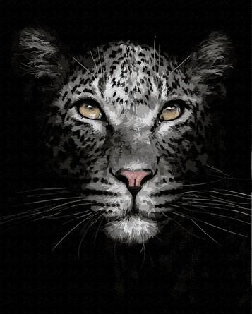 Картина по номерам на подрамнике. Кошка в темноте ВанГогВоМне