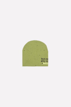 Шапка №274 Зелёная черепаха Crockid