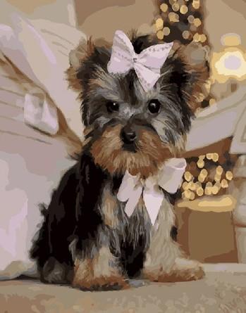 Картина по номерам на подрамнике. Собачка с бантиком ВанГогВоМне